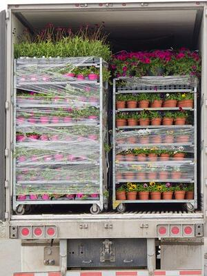 Truckload of nursery freight